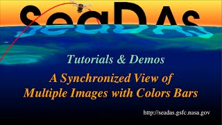 A Synchronized View of Multiple Images with Color Bars